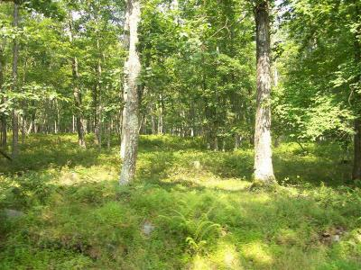 Conashaugh Lakes Residential Lots & Land For Sale: LOT 3502 Walton Way