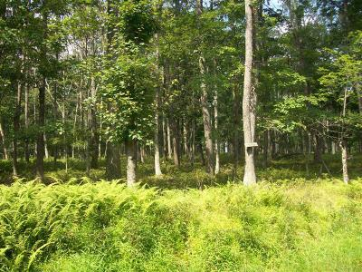 Conashaugh Lakes Residential Lots & Land For Sale: LOT 1612 Oneida Way