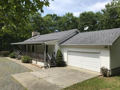 Dingmans Ferry Single Family Home For Sale: 1127 Silver Lake Rd