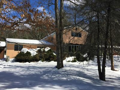 Dingmans Ferry Single Family Home For Sale: 109 Fire Lane Rd