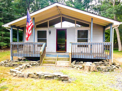 Pike County Single Family Home For Sale: 398 Wild Acres Dr
