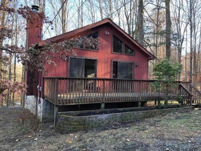 Lake Ariel Single Family Home For Sale: 1186 Commanche Cir