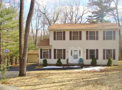Tafton PA Single Family Home For Sale: $175,000
