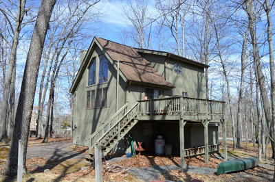 Masthope Single Family Home For Sale: 143 Laurel Rd