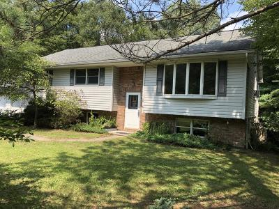 Honesdale Single Family Home For Sale: 29 Bede Cir