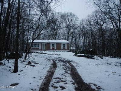 Dingmans Ferry Single Family Home For Sale: 124 Laurel Dr