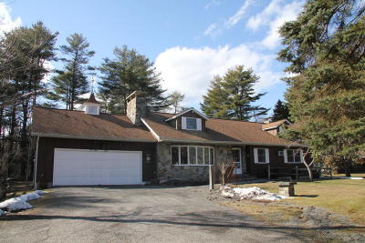 Dingmans Ferry Single Family Home For Sale: 110 Deweys Dr