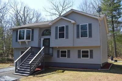 Dingmans Ferry Single Family Home For Sale: 124 E Pocono Cir Dr
