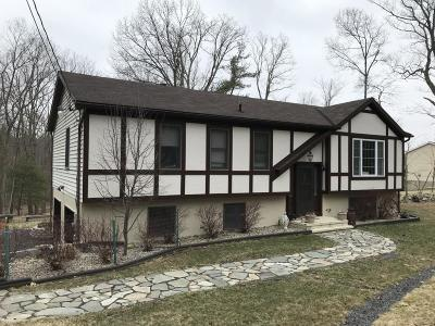 Milford Single Family Home For Sale: 149 Kiesel Rd