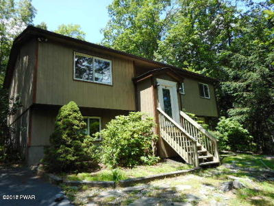 Dingmans Ferry Single Family Home For Sale: 143 Cypress Rd