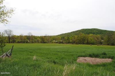 Union Dale PA Residential Lots & Land For Sale: $231,848