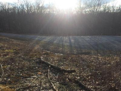 Blue Heron Woods Residential Lots & Land For Sale: Lot 143 Wedgewood Dr