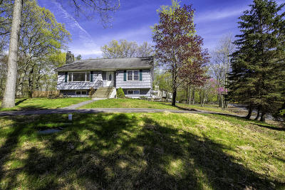 Hawley Single Family Home For Sale: 217 Upper Lakeview Dr