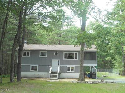 Dingmans Ferry Single Family Home For Sale: 195 Fox Rd