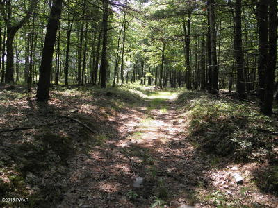 Hawley PA Residential Lots & Land For Sale: $299,500