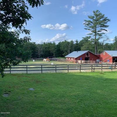 Dingmans Ferry Farm For Sale: Pa-739
