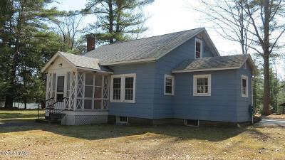 Narrowsburg Single Family Home For Sale: 44 Dexheimer Rd