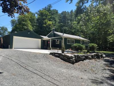 Hawley Single Family Home For Sale: 1776 Route 590