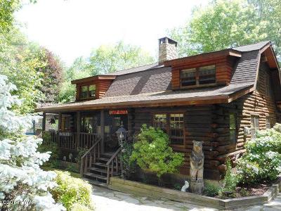 Hemlock Farms Single Family Home For Sale: 805 Blackbirch Ct