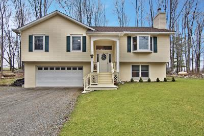 Lake Ariel PA Single Family Home For Sale: $289,900