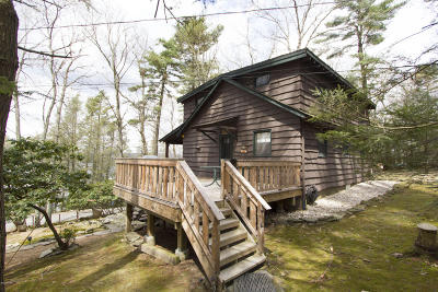 Paupack Single Family Home For Sale: 149 Lightning Way