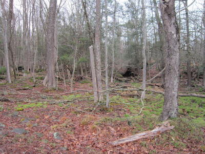 Masthope Residential Lots & Land For Sale: 278 Powderhorn Dr