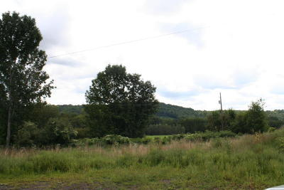 Equinunk Residential Lots & Land For Sale: 485 Rutledgedale Rd