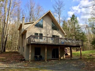Greentown Single Family Home For Sale: 135 Wallenpaupack Dr