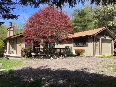 Lake Ariel Single Family Home For Sale: 14 Big Spring Ln