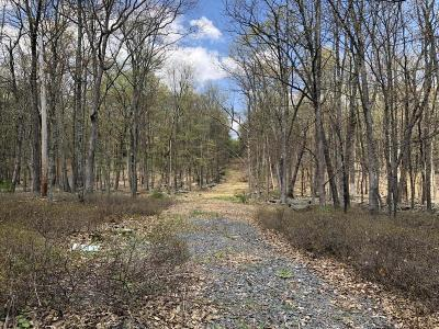 Milford Residential Lots & Land For Sale: 493 Log Tavern Rd
