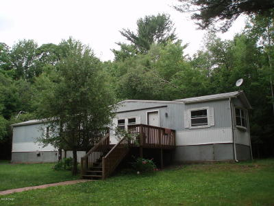 Single Family Home For Sale: 917 Milford Rd