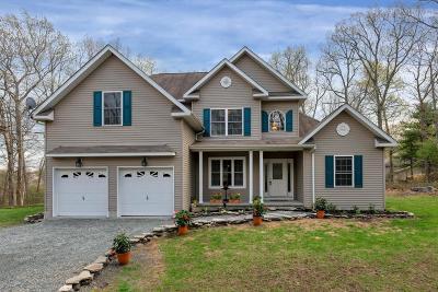 Milford Single Family Home For Sale: 110 Lenape Dr