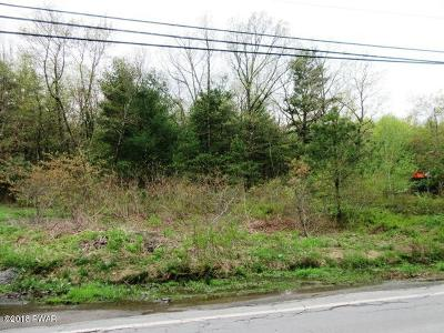 Lords Valley PA Residential Lots & Land For Sale: $279,000