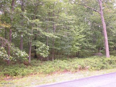 Gouldsboro Residential Lots & Land For Sale: Lot 12 Chestnut Dr