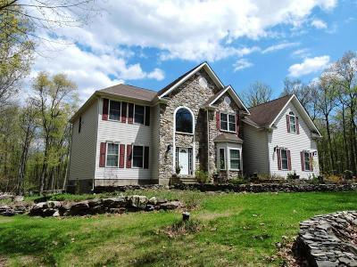 Dingmans Ferry Single Family Home For Sale: 135 Spruce Run Dr