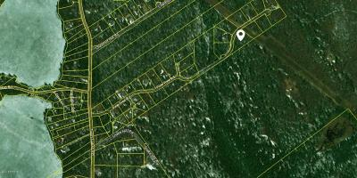 Residential Lots & Land For Sale: Lot 20 Pine Tree Rd
