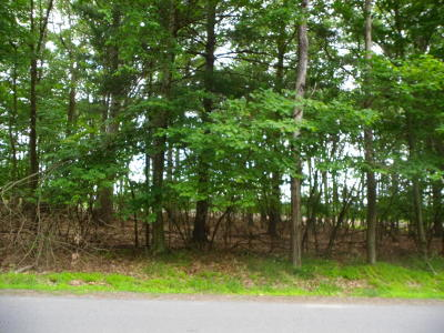 Tanglwood Lakes Residential Lots & Land For Sale: 993 Yacht Club Dr