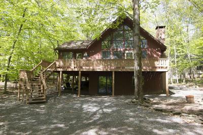 Lake Ariel Single Family Home For Sale: 1031 Aquarius Dr