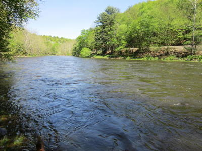 Lackawaxen Residential Lots & Land For Sale: TR 464 Stabler Rd