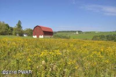 Starrucca Farm For Sale: 809 Fairmount Rd