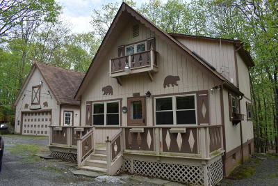 Pike County Single Family Home For Sale: 107 Ledgeway Lane