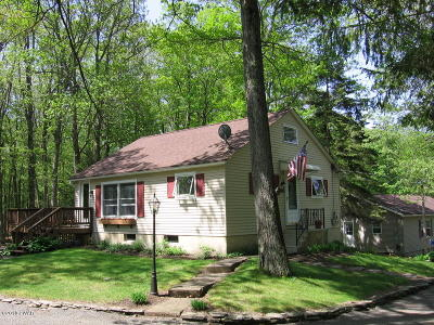Pike County Single Family Home For Sale: 173 Tauschman Rd