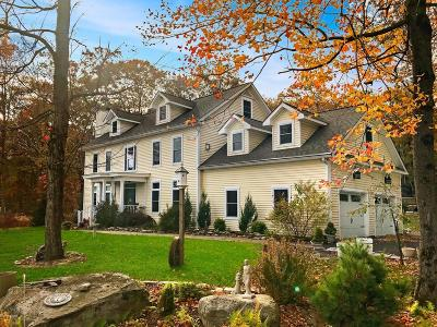 Shohola Single Family Home For Sale: 127 Nitche Rd