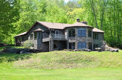 Honesdale Single Family Home For Sale: 35 Duck Harbor Rd