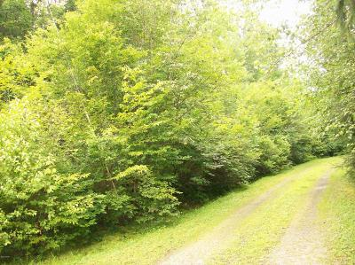 Wayne County Residential Lots & Land For Sale: Hempstead Lake Rd