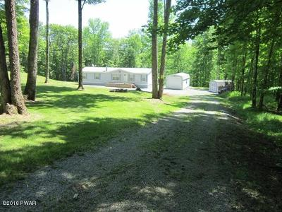 Equinunk Single Family Home For Sale: 471 Fork Mountain Rd