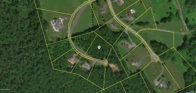 Honesdale Residential Lots & Land For Sale: 49 Hill Top Dr