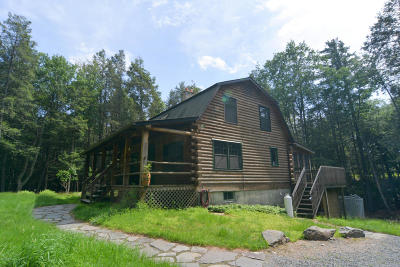 Milford Single Family Home For Sale: 113 Old Schoolhouse Rd