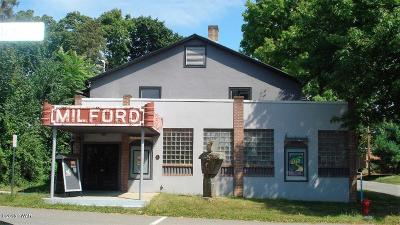 Milford Commercial For Sale: 114 E Catharine St