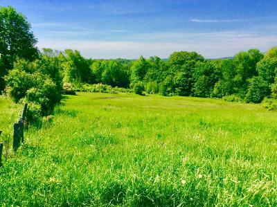Waymart Residential Lots & Land For Sale: Jubinsky Rd